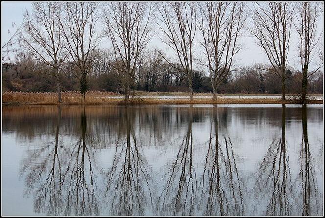 Spiegelung, Wasser, See, Stille, Fotografie