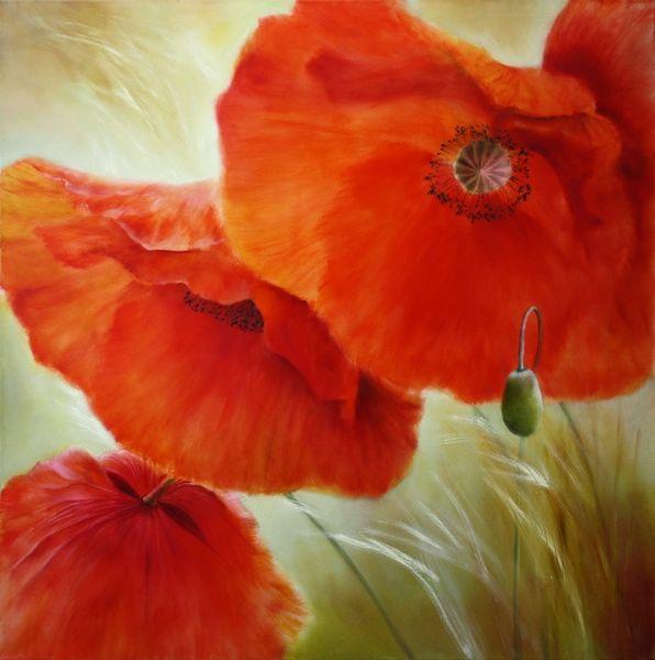 Mohn, Blumen, Blumenwiese, Sommer, Malerei