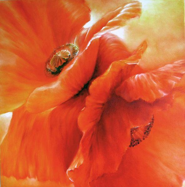 Blüte, Rot, Blumen, Mohn, Malerei