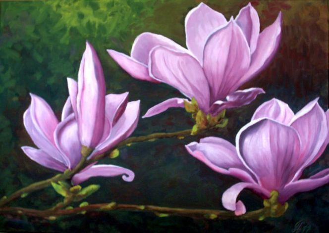 magnolien bild kunst von g nther hofmann bei kunstnet. Black Bedroom Furniture Sets. Home Design Ideas