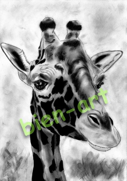 biens afrika giraffe urwald dekoration zebra urlaub von rea bien bei kunstnet. Black Bedroom Furniture Sets. Home Design Ideas