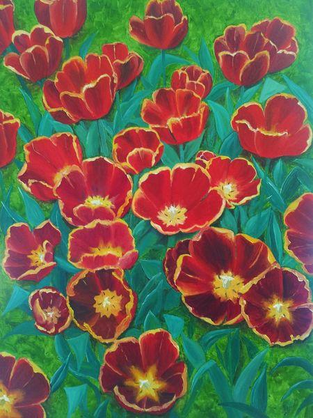 Bunt, Tulpen, Rot, Pflanzen, Blumen, Gelb