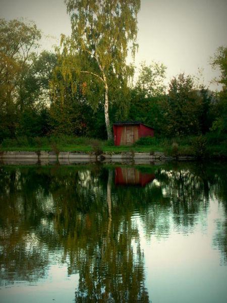 Wasser, See, Spiegelung, Fotografie, Spiegel