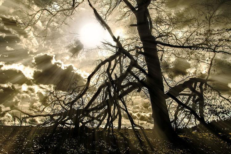 Sonne, Fotografie