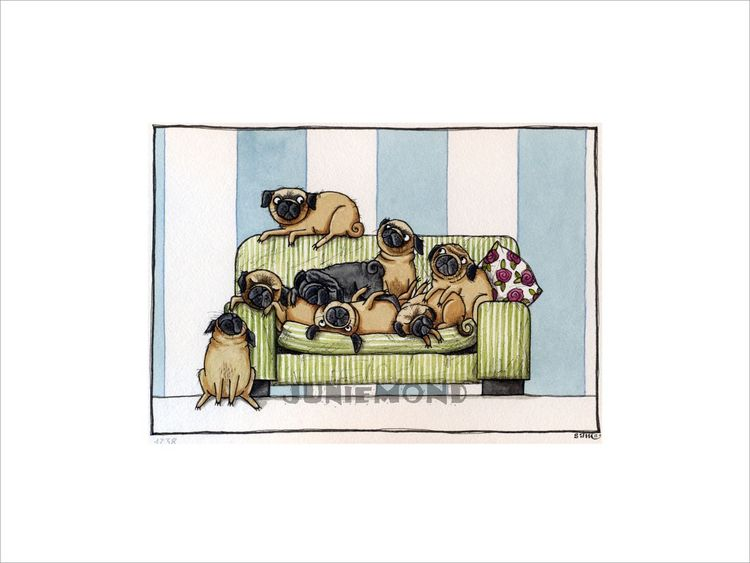 Couch, Mops, Hund, Sofa, Aquarell
