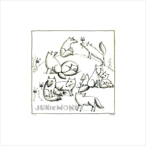 Schnee, Zeichnung, Polarfüchse, Weiß, Fuchs, Zeichnungen