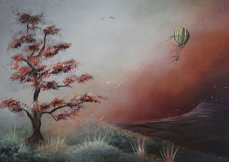 Reise, Ballon, Himmel, Heißluftballon, Baum, Wiese