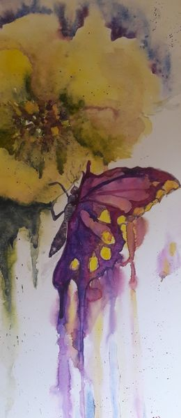 Natur, Blüte, Schmetterling, Aquarell