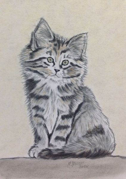 Pastellmalerei, Katze, Katzenportrait, Zeichnungen