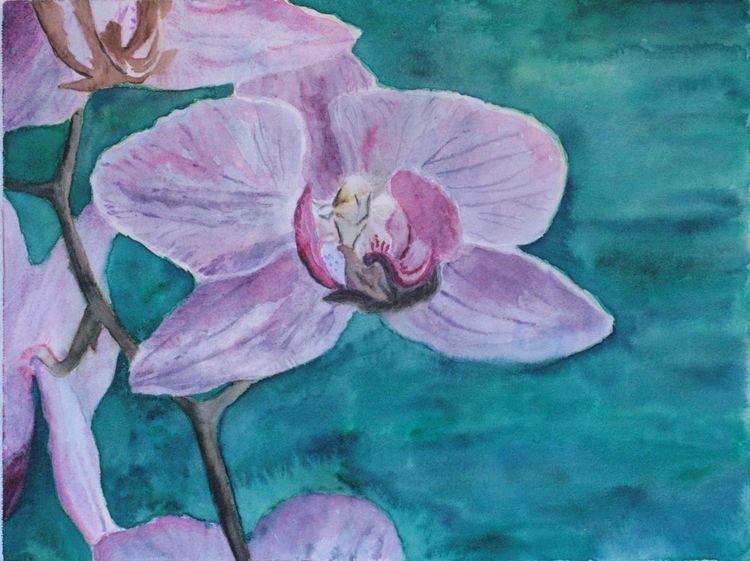 Pflanzen, Stiel, Blüte, Blumen, Orchidee, Malerei