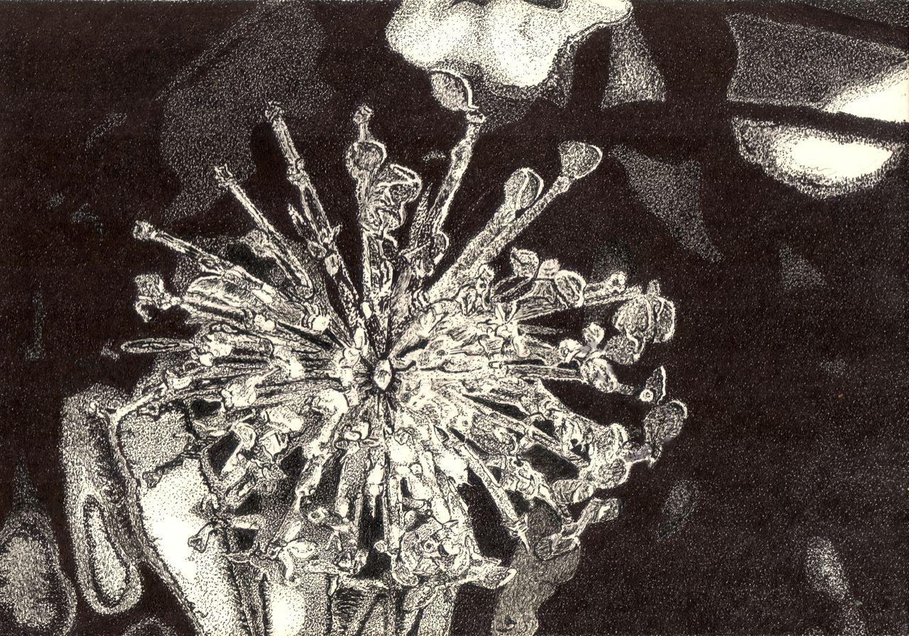 image pflanzen bl tter zeichnung tusche von c117 on kunstnet. Black Bedroom Furniture Sets. Home Design Ideas