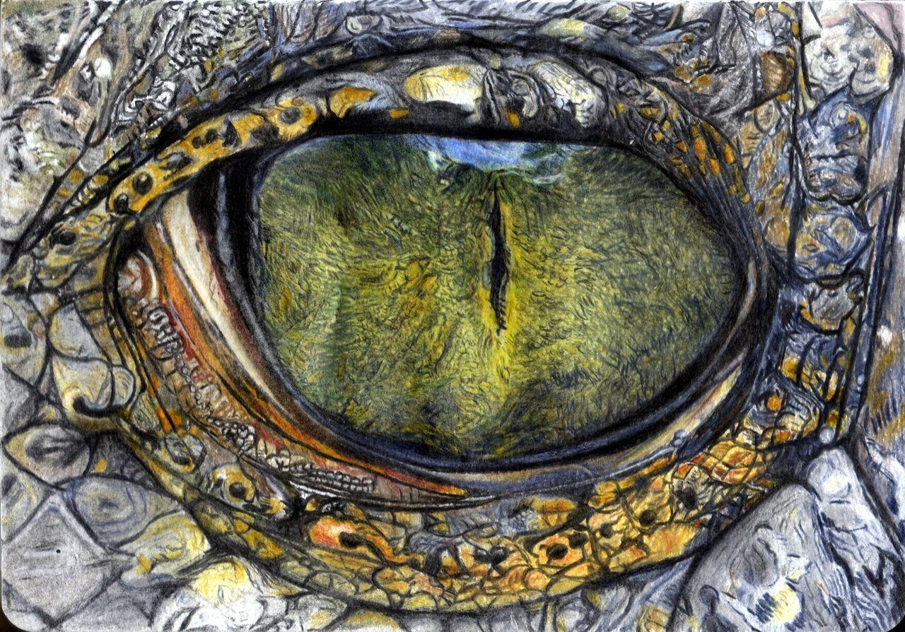 Tier Nr: 69 fertig - Schuppen, Tiere, Augen, Krokodil von kruemel1 ...