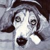Hund, Beagle, Blick, Zeichnungen