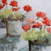 Geranie, Topfpflanzen, Blüte, Aquarell