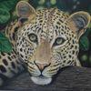 Leopard, Tierzeichnung, Zeichnungen, Wildtiere
