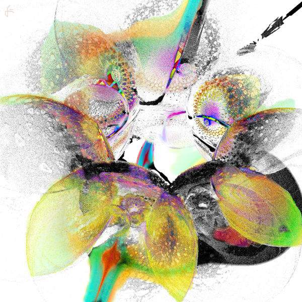 Fraktalkunst, Incendia, Digital, Gimp, Digitale kunst, Blickwinkel