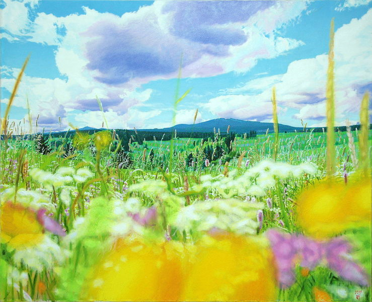 Spektralfarbe, Blumen, Wiese, Fotorealismus, Natur, Licht