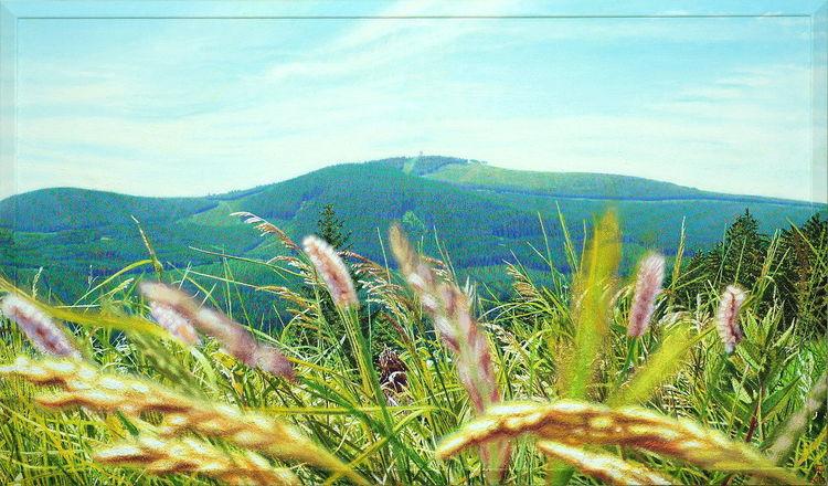 Malerei, Fotorealismus, Himmel, Blüte, Landschaft, Wiese