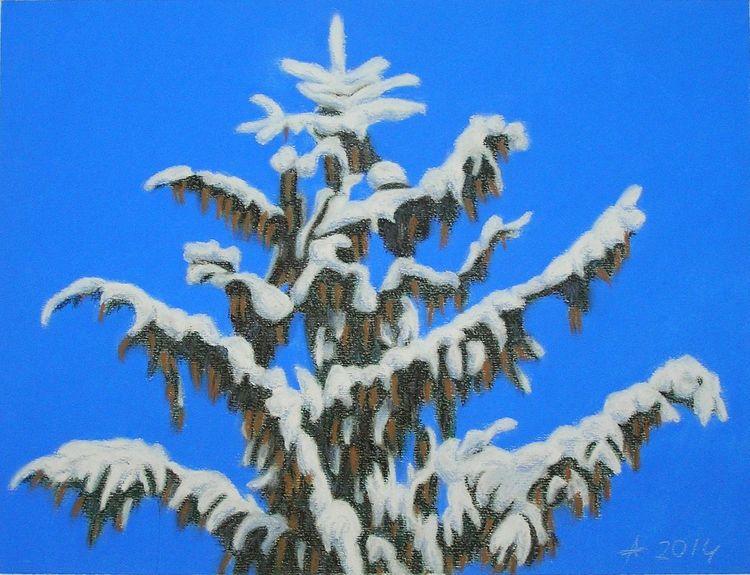 Blau, Tanne, Natur, Malerei, Pastellmalerei, Himmel