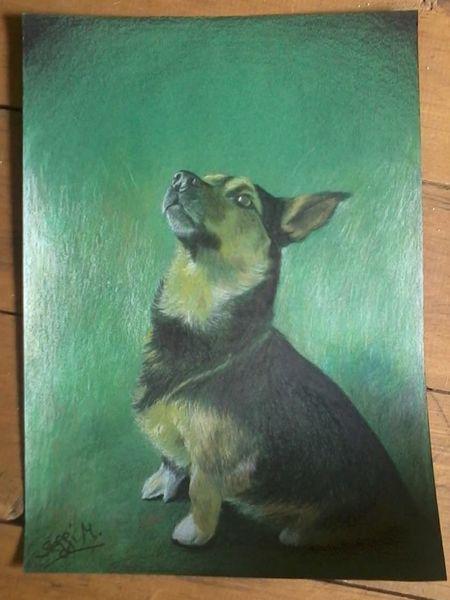 Hund, Braun, Grün, Schwarz, Zeichnungen,