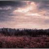 Moor, Fiatlux, Landschaft, Fotografie
