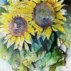 Gelb, Blumen, Sonnenblumen, Aquarell