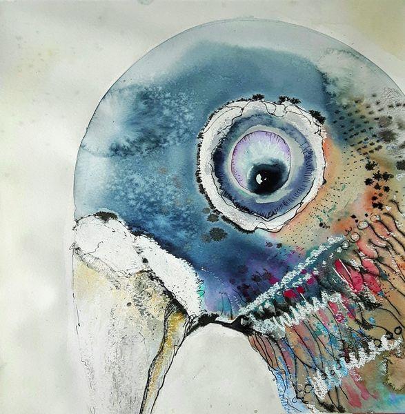 Schnabel, Taube, Vogel, Augen, Mischtechnik