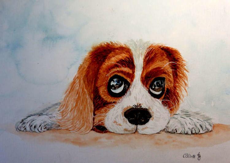 Hund, Freund, Ruhe, Aquarell, Liebling