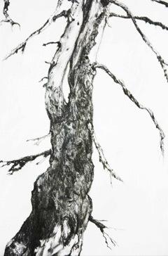 Landschaft, Schwarz weiß, Zeichnung, Natur, Zeichnungen