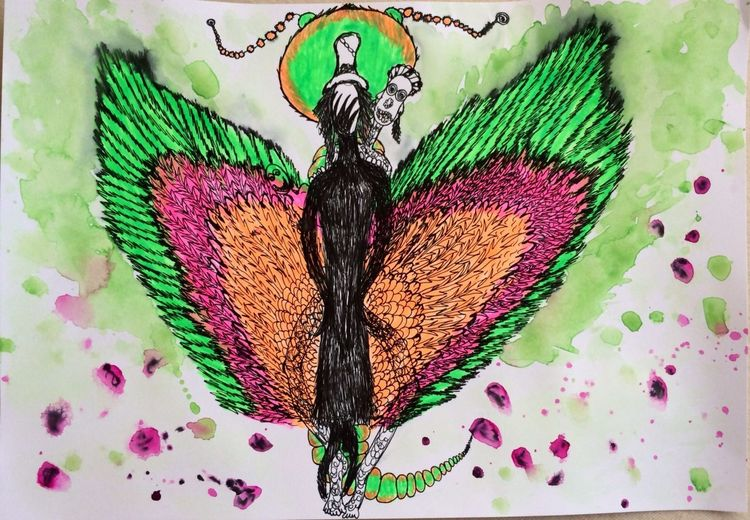 Motte, Schmetterling, Zeichnungen