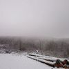 Rot, Winter, Nebel, Fotografie