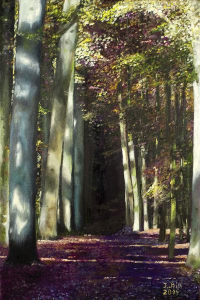 Schatten, Stille, Ölmalerei, Malerei, Natur, Wald