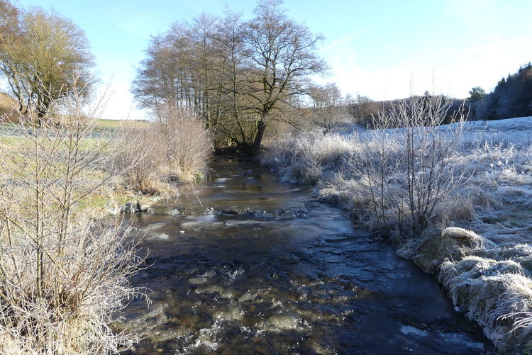 Frost, Wasser, Bach, Himmel, Rauhreif, Winter