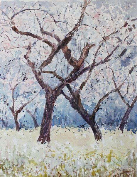 Frühliung, Aquarellmalerei, Mandel, Blüte, Aquarell