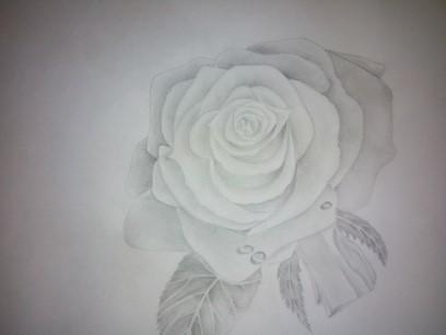 Rose Bleistiftzeichnung Blumen Rose Zeichnung Von Angel227 Bei