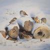 Spatz, Winter, Schnee, Vogel