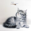 Tiere, Katze, Aquarell