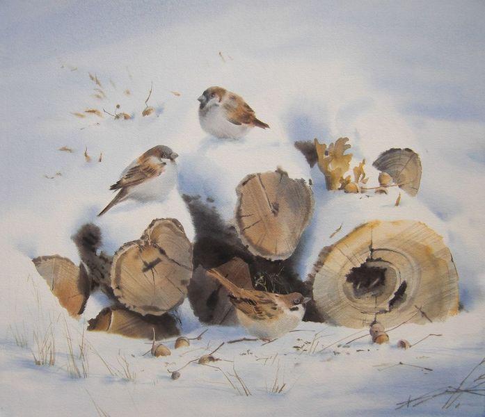 Schnee, Vogel, Spatz, Winter, Aquarell