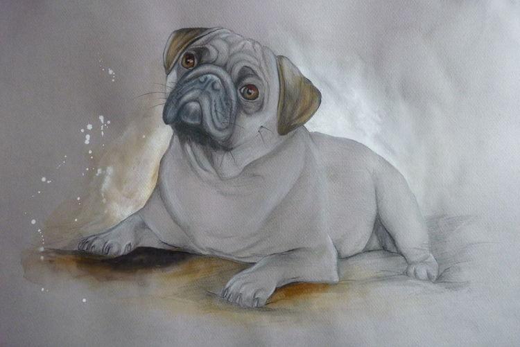 Mops, Tiere, Hund, Zeichnungen