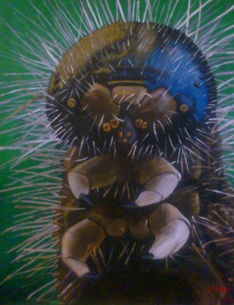 Insekten, Acrylmalerei, Tiere, Natur, Portrait, Malerei