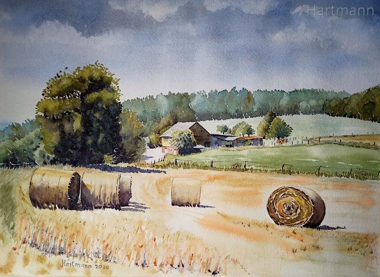 Bauernhof, Sommer, Bergisches land, Wald, Hattingen, Aquarell