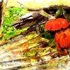 Wald, Natur, Pilze, Malerei