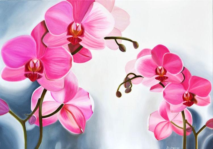 Orchidee, Ölmalerei, Fotorealismus, Malerei, Pink