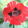 Ölmalerei, Mohnblüten, Rot, Malerei