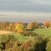 Landschaft, Baum, Herbst, Fotografie