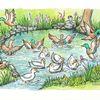 Ente, Baum, Junge, Teich