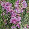 Aquarellmalerei, Blumen, Aquarell, Schönheit