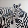 Zebra, Paar, Schwarz weiß, Malerei