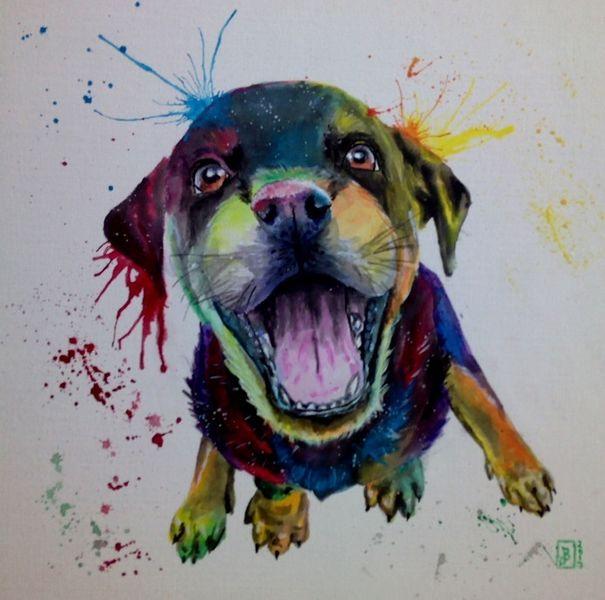 Hund, Bunt, Welpe, Malerei