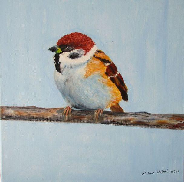 Vogel, Tiere, Feldsperling, Malerei